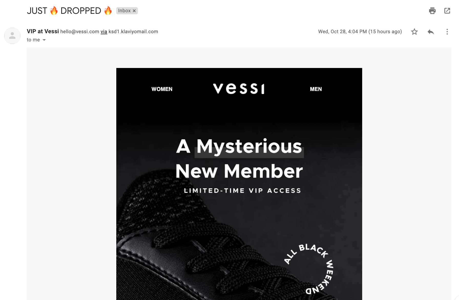 Email Marketing Example Vessi