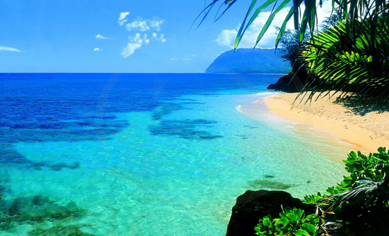 Hawaii-ocean