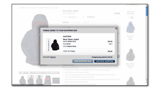 Conversion: Lands' End checkout - after