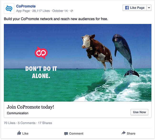 CoPromote Cow and Dolphin facebook ad example critique