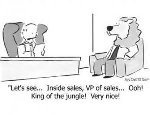 interview marketing blogs