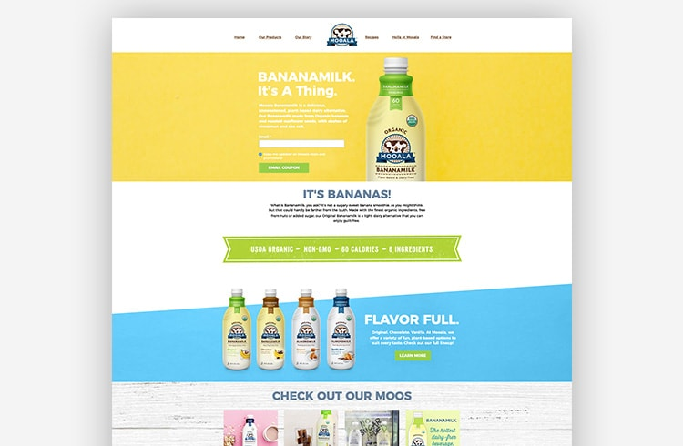 Great landing page examples: Mooala