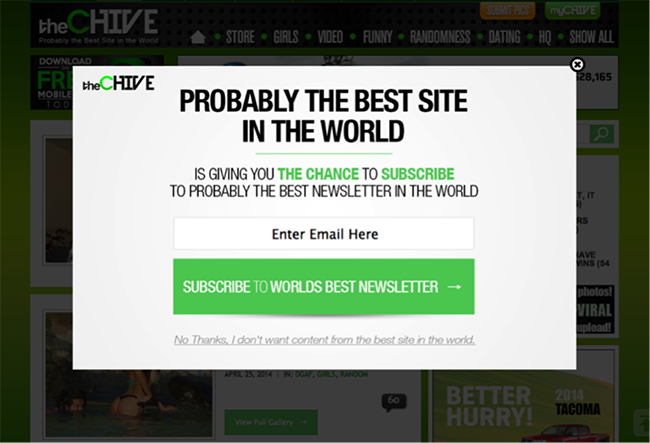 overlay-ideas-chive-newsletter