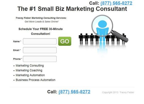 small-biz-consultant