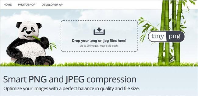 Bilder können mithilfe des Tools TinyPNG komprimiert werden