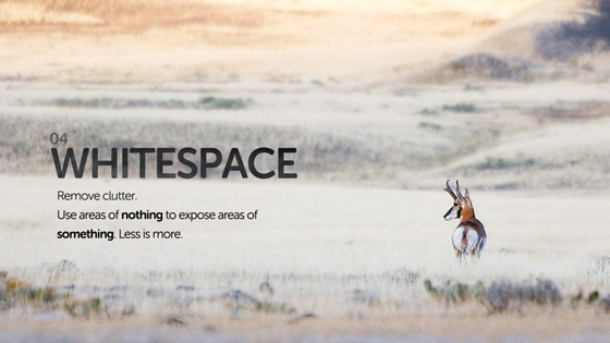 whitespace design growth hack landing page